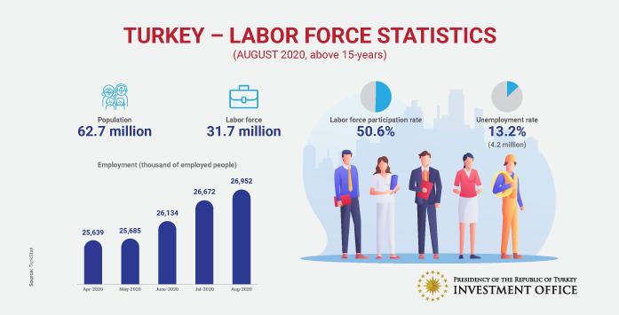 Türkiye İş Gücü ve İstihdam Verileri Görseli