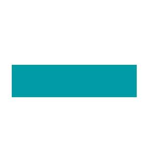 Netaş Logosu
